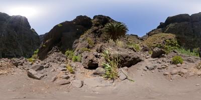 Tenerife - Masca 3