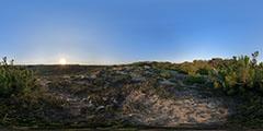 Cap Ferret - océan - entre dunes et forêt