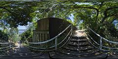 Cap Ferret - escalier La Vigne - végétation