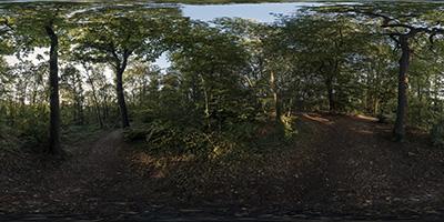 Forêt de Louveciennes — 1/3