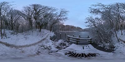 Forêt de Louveciennes — Étang De Béchevet I